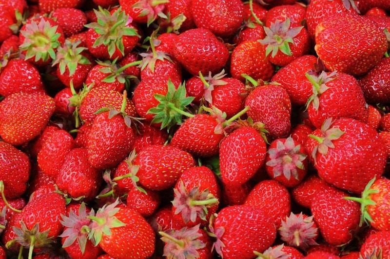 strawberry-strawberries