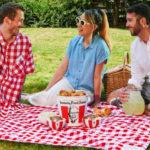 picnic-polo
