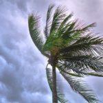 tropical-storm