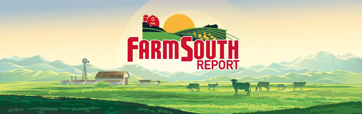 Farm South Report
